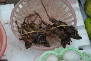 Laos - delicacies